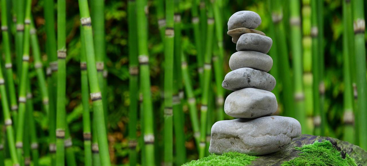 Minder energie verbruiken in de tuin